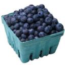 blueberries_pic_textmedium.png